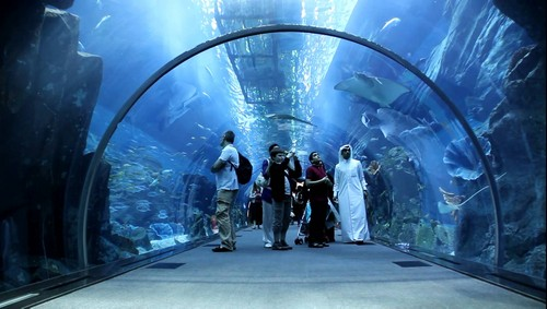 aquarium-dubai-mall