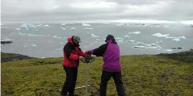 foto-setelah-1500-tahun-lumut-antartika-ini-kembali-dihidupkan